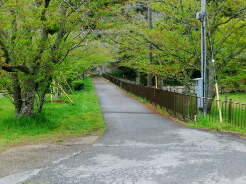 H26.大塚山(1)-4