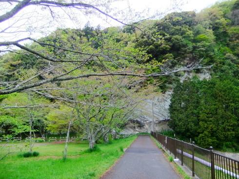 H26.大塚山(1)-6