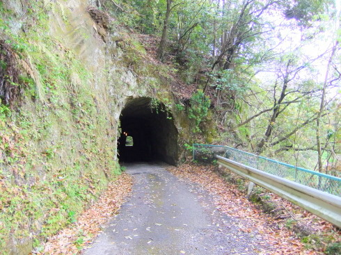 H26.大塚山(1)-12
