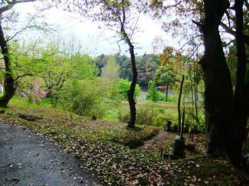 H26.大塚山(1)-18