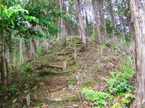 H26.大塚山(3)-2