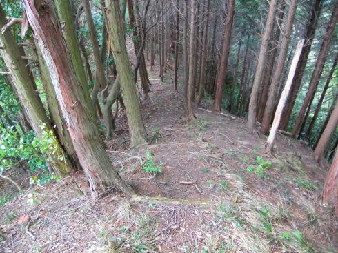 H26.大塚山(3)-9