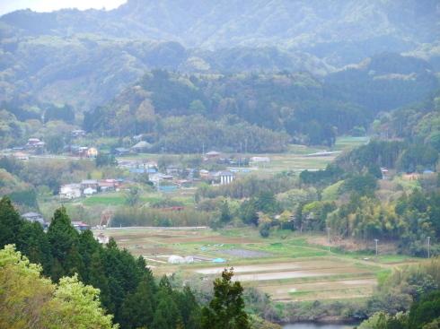 H26.大塚山(3)-22
