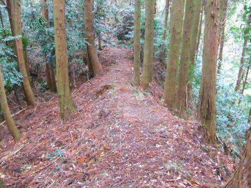 H26.大塚山(3)-30