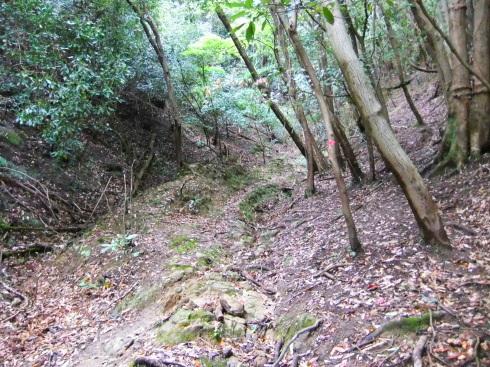H26.大塚山(3)-37