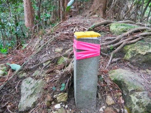 H26.大塚山(3)-42