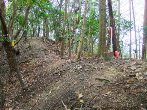 H26.大塚山(3)-46