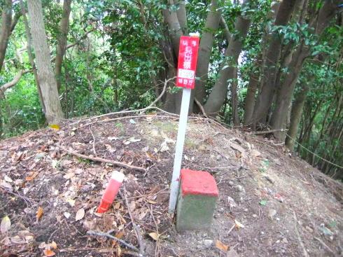 H26.大塚山(3)-47
