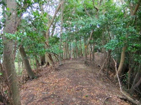 H26.大塚山(4)-5