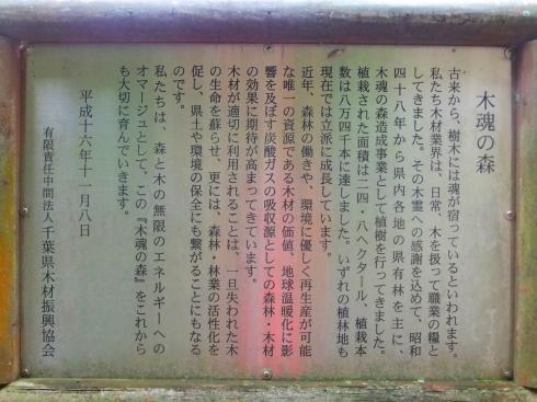 H26.大塚山(4)-20