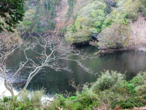 H26.大塚山(4)-25