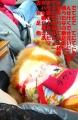 2014年9月23日(火)アストロちゃんの後部座席の足元にラヴィン