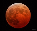 luna roja140908.jpg