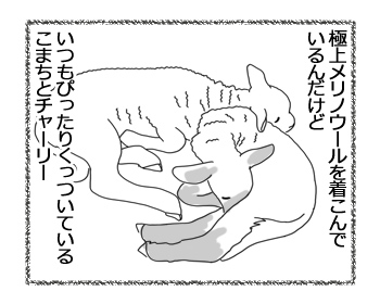 羊の国のラブラドール絵日記シニア!!「かわいちょうな、あたち」2