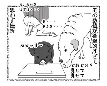 羊の国のラブラドール絵日記シニア!!「数字のマジック」4