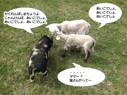 羊の国のラブラドール絵日記シニア!!「プレゼント企画当選者のp皆様」1