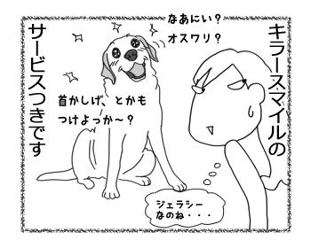 羊の国のラブラドール絵日記シニア!!「クロエちゃんの嫉妬?」4