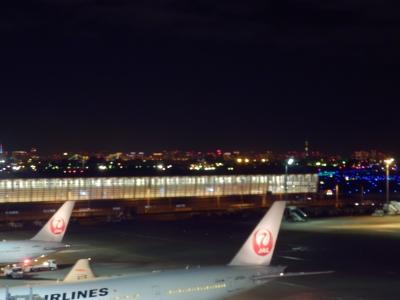 羽田空港国際線ターミナル「SKY LOUNGE ANNEX」2