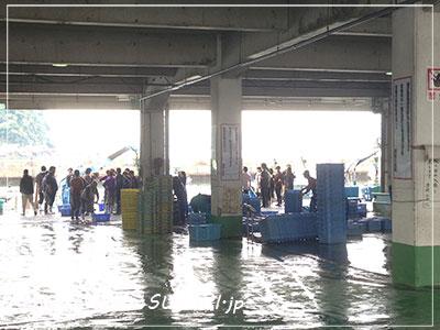 20140514魚市場2