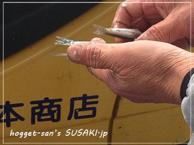 20140514魚市場4