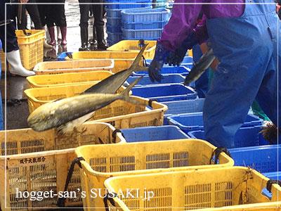 20140514魚市場16