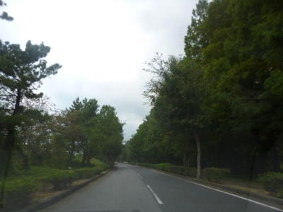 秋ヶ瀬公園20141009