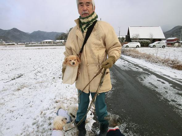 yukinohi 00223