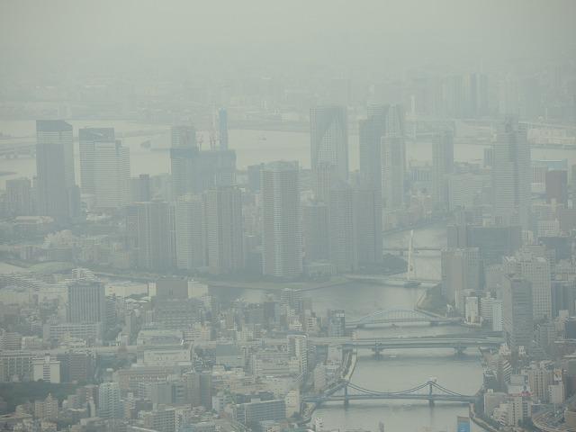 N1133隅田川河口方面