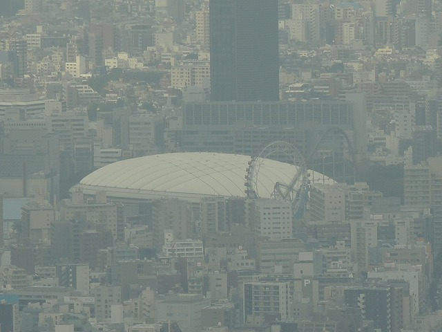 N1140東京ドーム