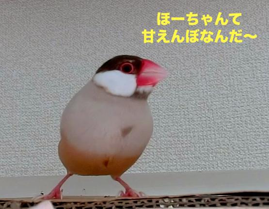 甘えんぼなんだ〜