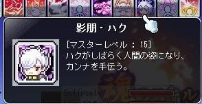 Maple140813_000737.jpg