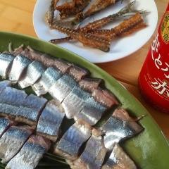 20141009秋刀魚