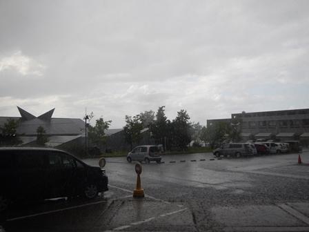 夏らしい雨