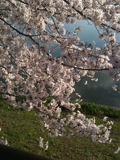 池田千恵公式ブログ iプラ・時間美人・Before 9主催、自分企画力で私をいっそう楽しもう!-sakurasaku
