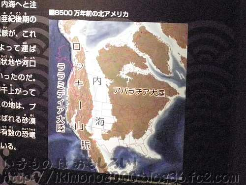 中生代白亜紀後期の北アメリカ大陸(展示パネル)