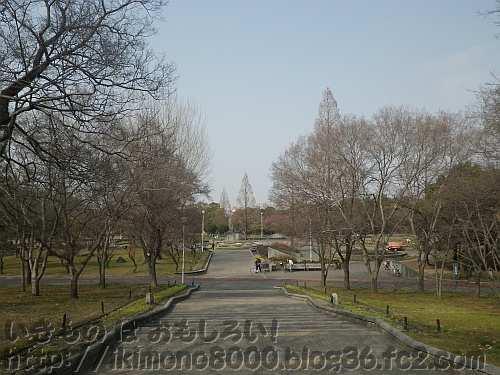 緑地というより公園という感じの久宝寺緑地