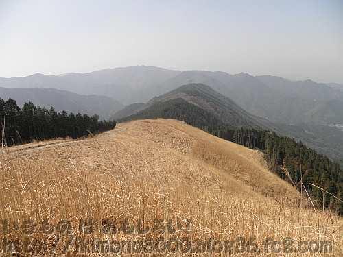 山焼前の岩湧山山頂キトラの茅場