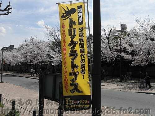 桜をバックに特別展恒例の幟