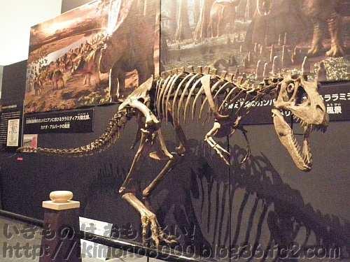 プチT-Rexって感じのテラトフォネウス
