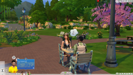 Sims4_公園_フレームレート_01