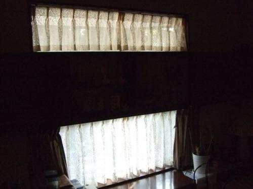 川島織物セルコン ウィローボウレースFF6710
