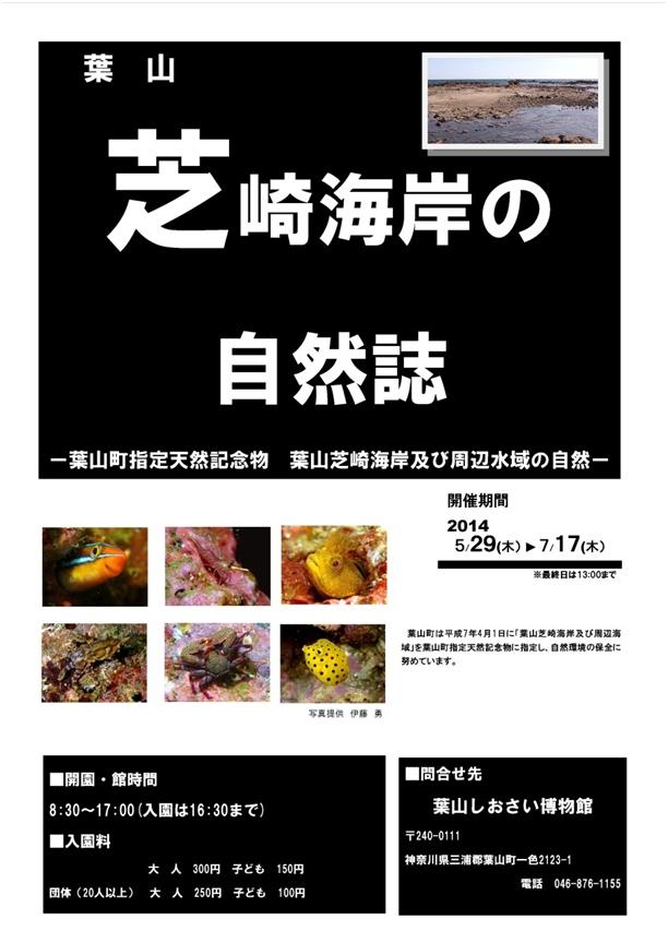 140527_siosai01.jpg