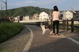 京都朝散歩