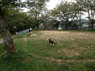 公園お散歩