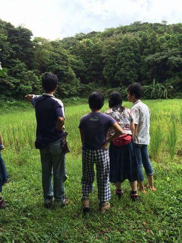 屋久島 (11)