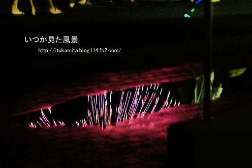 D3C_1494ri-ss.jpg