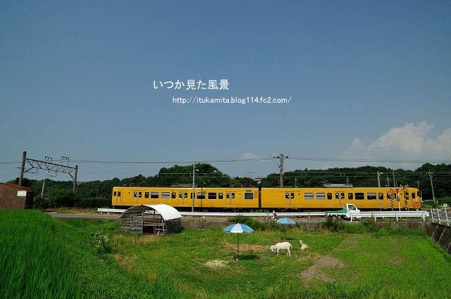 DS7_0387ri-s.jpg