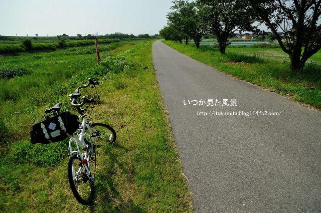DS7_0410ri-s.jpg