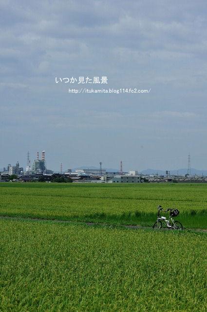 DS7_0683ri-s.jpg