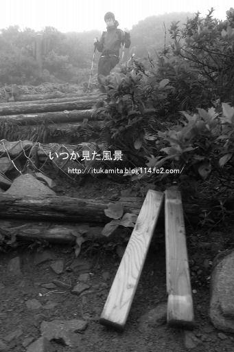 RIMG1446mi-ss.jpg